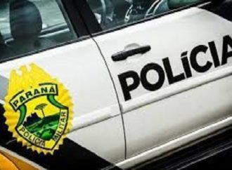 Homens armados atiram em cachorro em Ponta Grossa