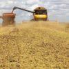 Paraná deve colher 40,9 milhões de toneladas de grãos na safra de 2020