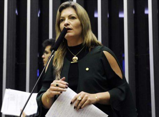 Deputada Aline Sleutjes é afastada da vice-liderança do governo na Câmara dos Deputados