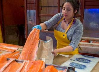 Autoridades chinesas culpam salmão por novo surto da Covid-19; saiba os motivos
