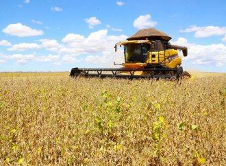 Paraná lança projeto de laboratório de inovação agropecuária