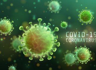 PG registra dois óbitos por COVID-19 neste sábado (19); total de mortes é de 87