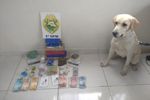 PM prende suspeito de tráfico de drogas em PG