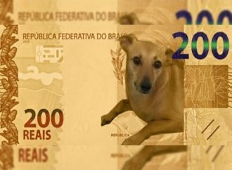 """Deputado quer o famoso """"vira-lata caramelo"""" estampando a nova nota de R$200"""