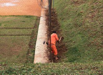 Paraná é destaque em números de presos trabalhando e estudando