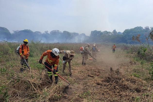 Exclusivo: Bombeiro ponta-grossense conta como foi lutar contra as chamas no Pantanal