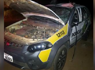 Polícia Militar se pronuncia sobre ataque com granada a policiais nos Campos Gerais