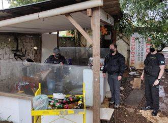 Vídeo: Polícia Civil desmonta quadrilha especializada no furto e venda de fios de cobre em PG